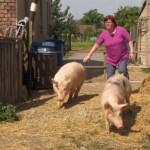 Bauer sucht Frau 2013 - Folge 2 - Angie packt bei den Schweinen mit an