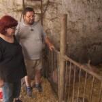 Bauer sucht Frau 2013 - Folge 2 - Angie und Helmut im Schweinestall