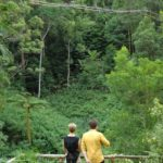 Dschungelcamp - Dschungelprüfung 7 - Sonja und Daniel schauen Mola und Larissa zu