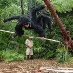 Dschungelcamp - Dschungelprüfung 8 - Larissa als Spinne