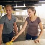 Bauer sucht Frau 2014 - Folge 2 - Jenny bürstet einen Eber