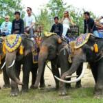 DSDS 2015 - Die Jury auf Elefanten in Thailand