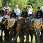 DSDS 2015 - Die Jury und die Elefanten
