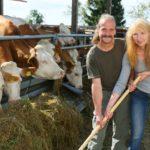 Bauer sucht Frau 2014 - Gottfried und Martina bei den Kühen