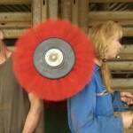 Bauer sucht Frau 2014 - Gottfried und Martina an der Kuhbürste