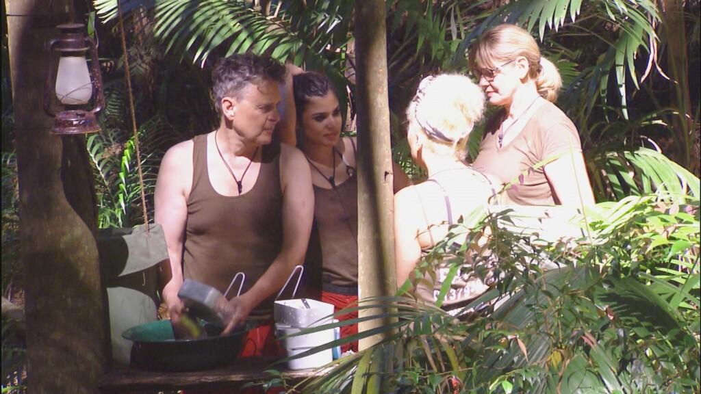 Rolfe Scheider, Tanja Tischewitsch, Patricia Blanco und Maren Gilzer erledigen gemeinsam den Abwasch. Ihre Nebenbeschäftigung dabei: Ablästern über Walter.