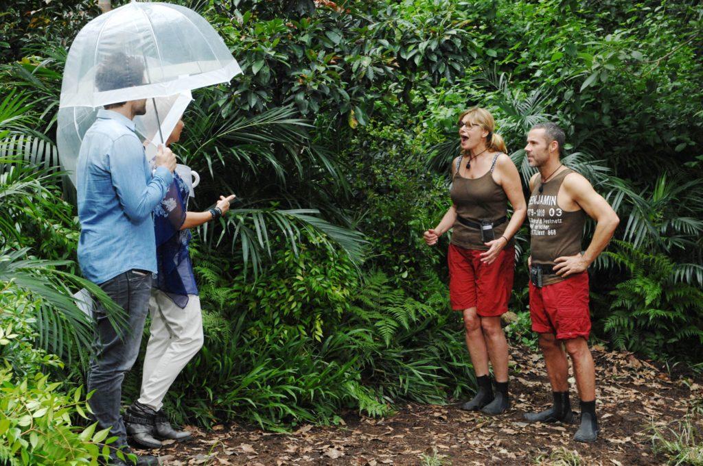 Die Camper haben unter sich entschieden, das Maren Gilzer (44) und Benjamin Boyce (36) auch mal zu einer Dschungelprüfung antreten dürfen.