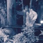 Dschungelcamp 2015 Tagebuch Tag 9 - Walter ist angeschlagen