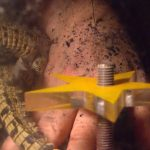 Dschungelcamp 2015 Dschungelprüfung 11 - Rolfe mit Babykrokodilen
