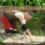 Dschungelcamp 2015 Dschungelprüfung 13 - Rolfe macht Bekanntschaft mit Waranen