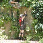 Dschungelcamp 2015 Dschungelprüfung 14 - Jörn knotet einen halben Stern fest