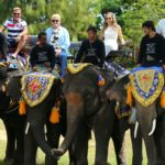 DSDS 2015 Recall 4 - Die Jury reitet auf Elefanten