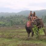 Die Bachelorette 2015 Halbfinale - Alisa und Alex auf einem Elefanten