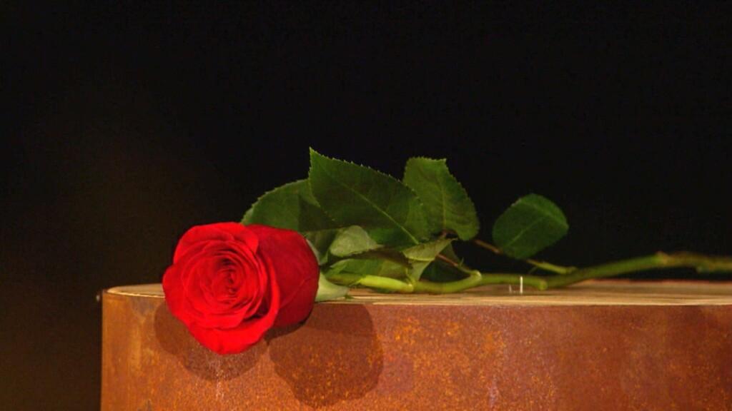 Alisa hat sich verliebt. Wer bekommt die letzten Rose und damit auch den Schlüssel zu Alisas Herz?