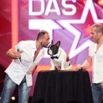 Das Supertalent 2015 Show 7 - Emanuel Tiburzio und Walter Ledermüller mit Hund Junior