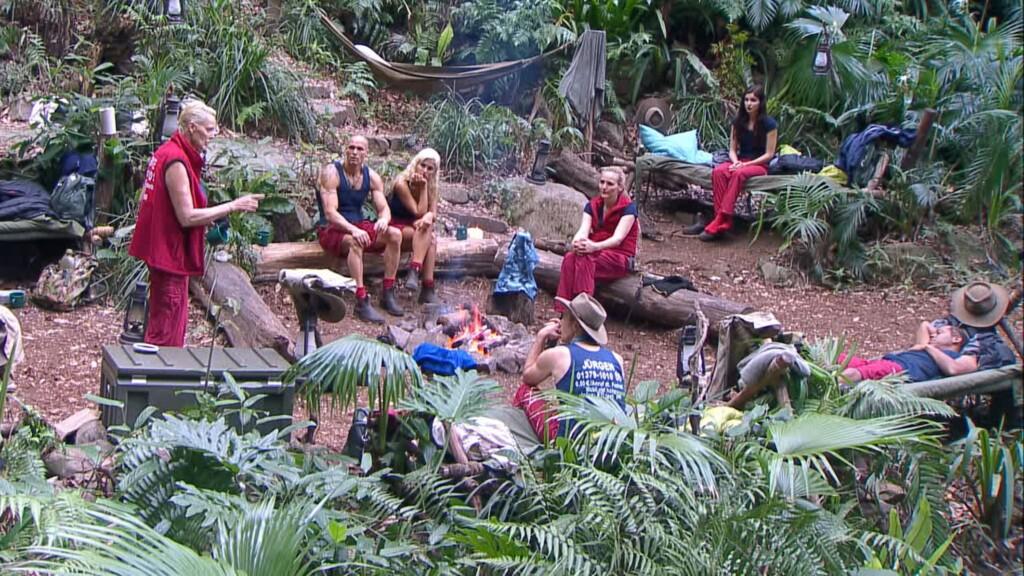 Tag 11 im Camp - Spinnenalarm im Dschungel.
