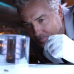 CSI: Vegas Serienfinale - William Petersen als Gil Grissom