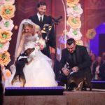 DSDS 2016 Hochzeit - Sandra berger, Victor und Samuel Diekmann