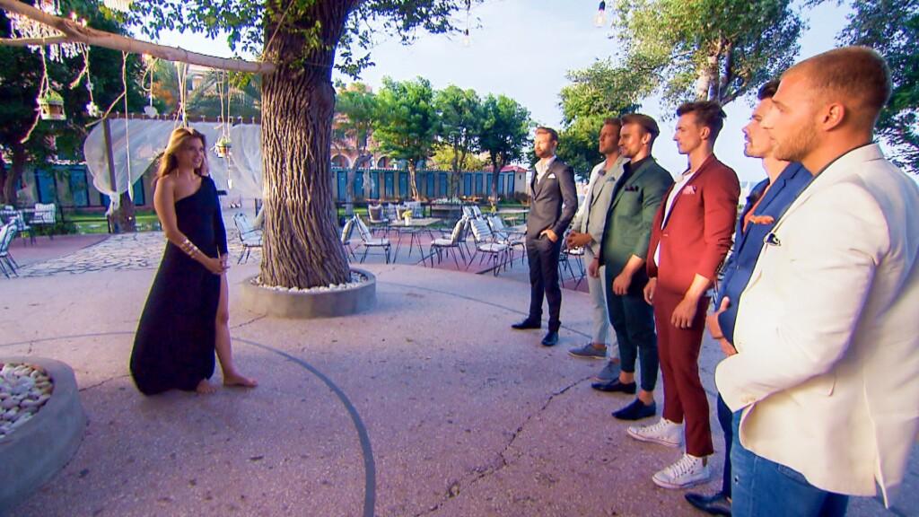 Für wen wird sich Nadine in der Nacht der Rosen entscheiden? V.l.: Daniel, Chris, Alex, Maxim, Brian, Filip