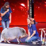 """Das Supertalent 2019 Show 13 - Julia und Henriette Prinke mit Schwein """"Idefix"""""""