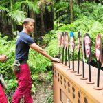 Dschungelcamp 2018 Tag 4 - David und Natascha beim Ranking