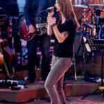 Sing meinen Song - Christina Stürmer