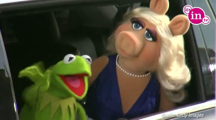 Miss Piggy und Kermit gehen ab sofort getrennte Wege