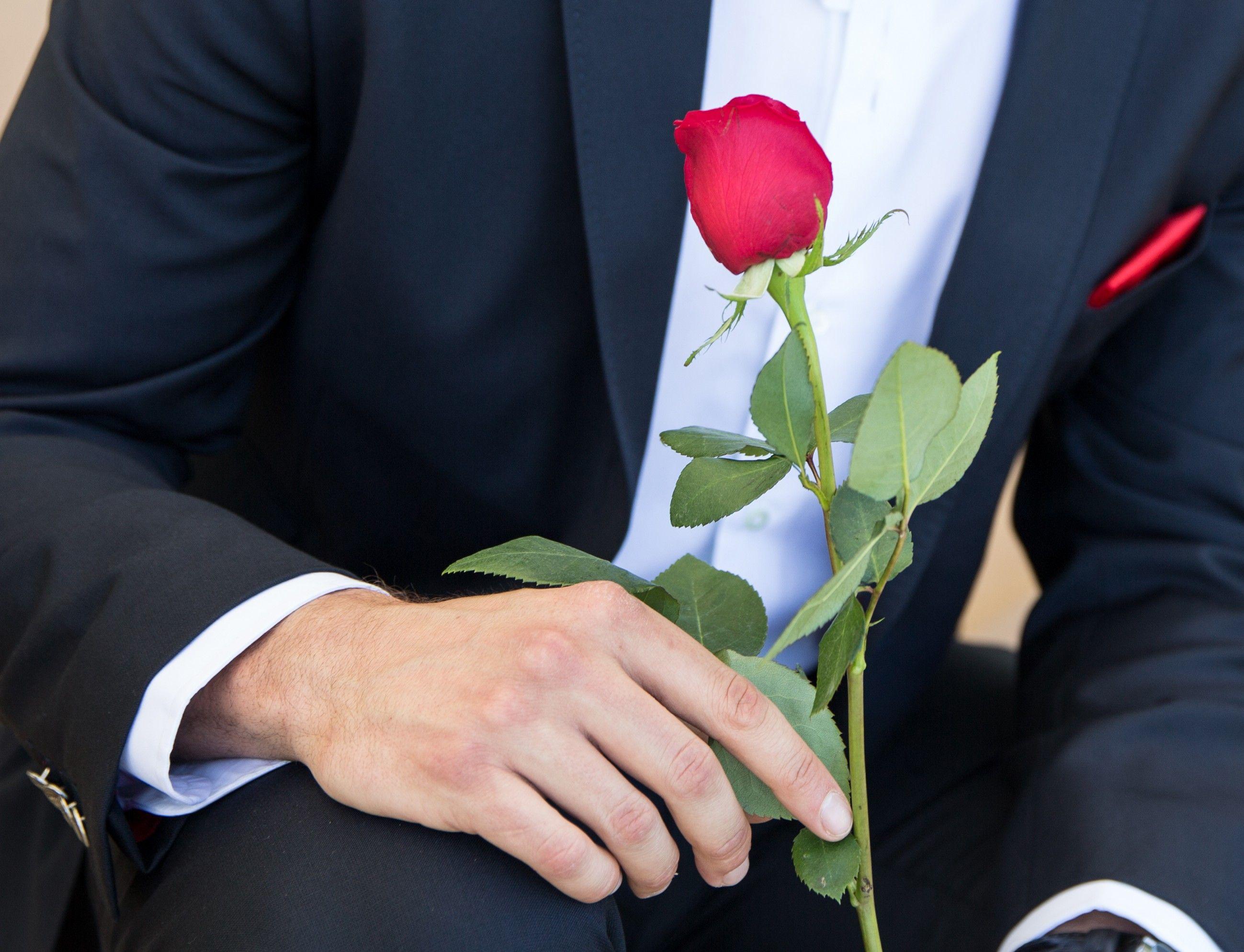 Der Bachelor - Daniel Völz ist der neue Rosenkavalier