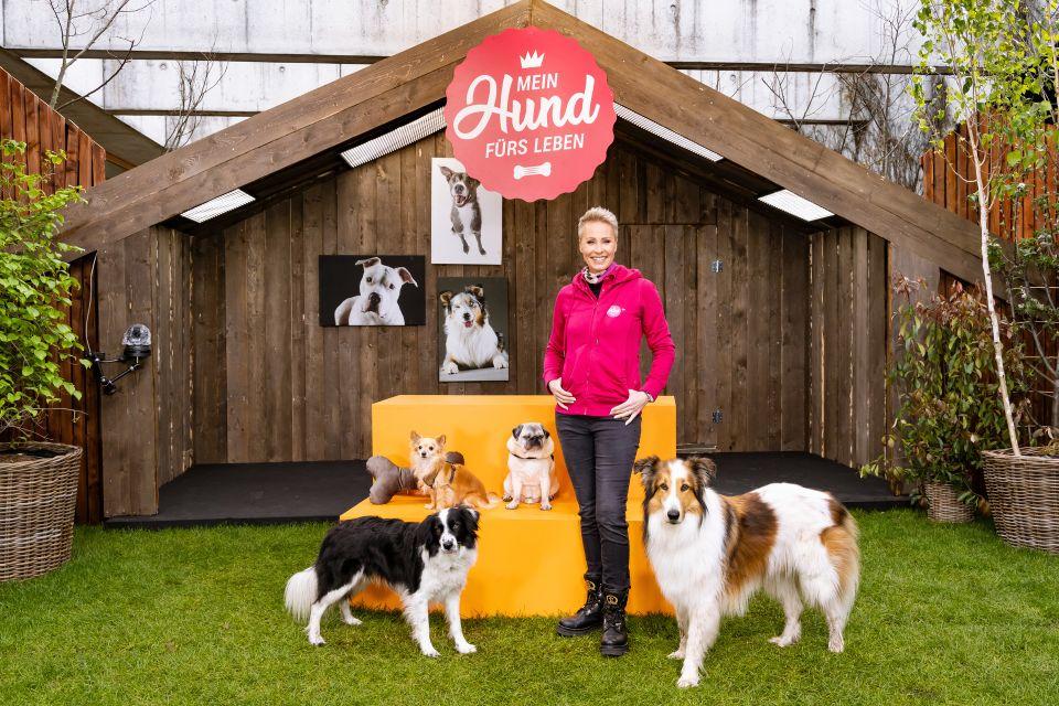 Sonja Zietlow sorgt dafür, dass Frauchen und Herrchen auf den wirklich passenden Hund kommen.