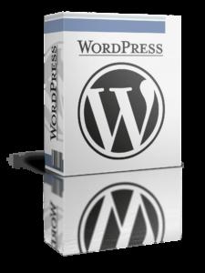 Wir installieren WordPress für Sie!